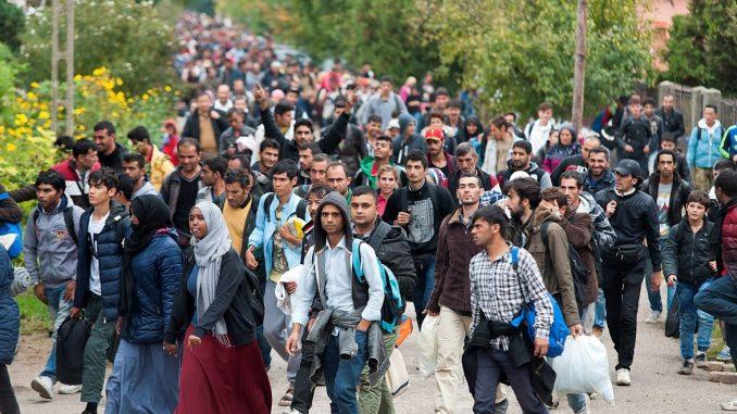 imigranci w unii europejskiej